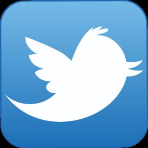 Twitter beingatraveler contact us